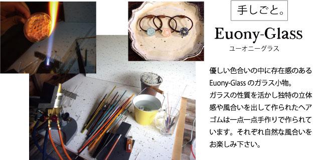 euony_top.jpg